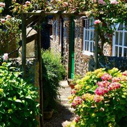 Leuke budgetideeën voor in de tuin