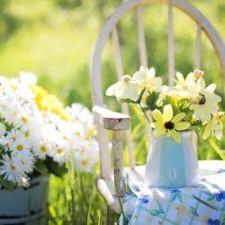 Hoe jij jouw tuin nog gezelliger kan maken