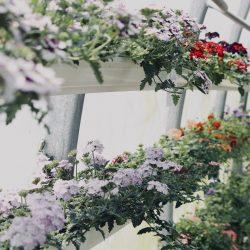 Bloembakken, een verrijking voor jouw tuin